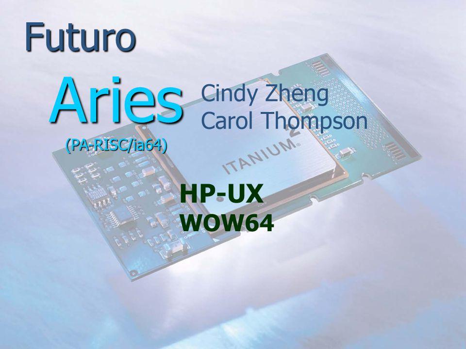 Futuro Cindy Zheng Carol Thompson Aries (PA-RISC/ia64) HP-UX WOW64