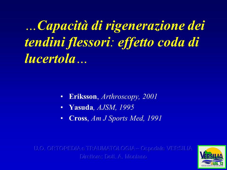…Capacità di rigenerazione dei tendini flessori: effetto coda di lucertola… Eriksson, Arthroscopy, 2001 Yasuda, AJSM, 1995 Cross, Am J Sports Med, 1991