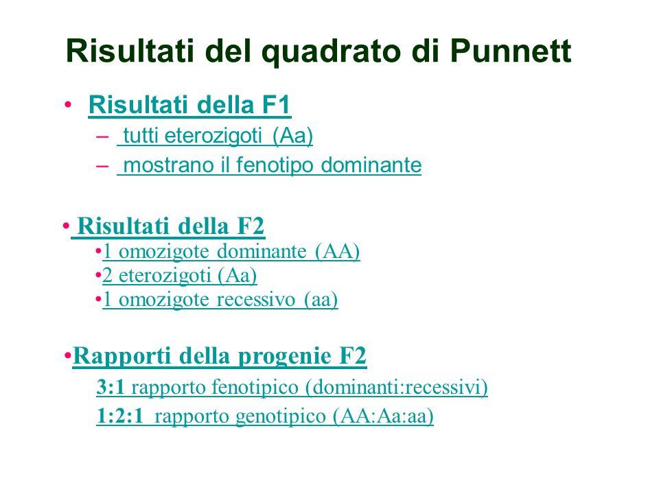 Quadrato di Punnett