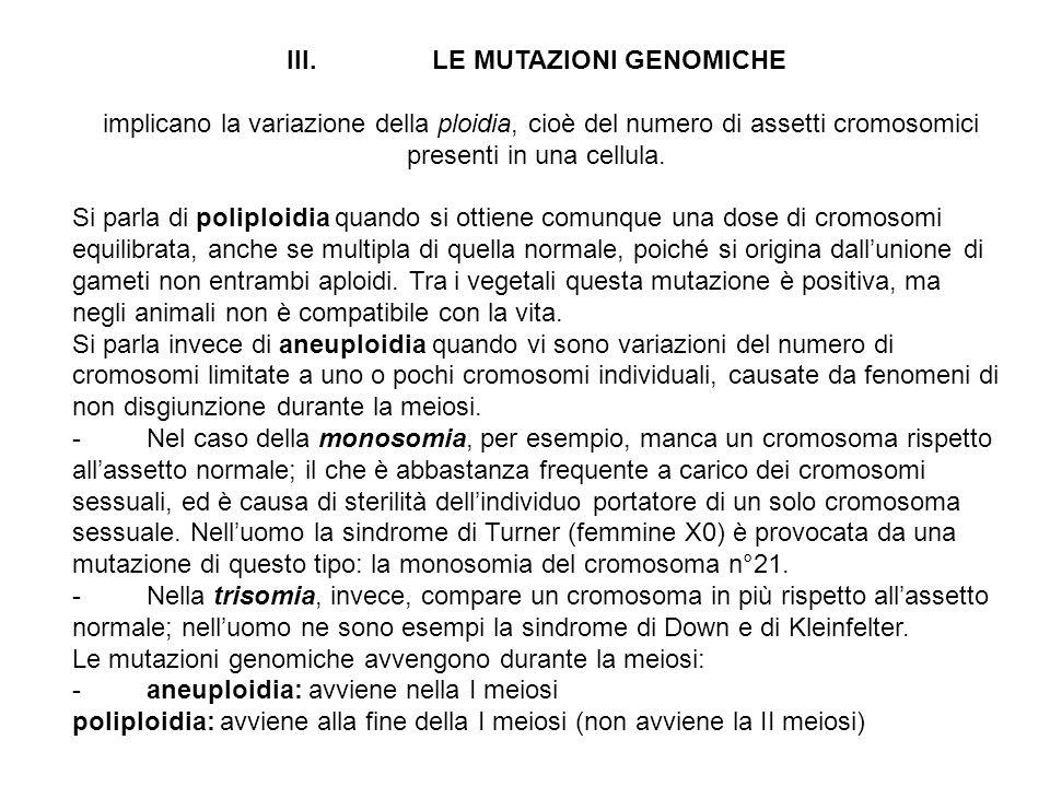 II. LE MUTAZIONI CROMOSOMICHE consistono in modifiche delle dimensioni e dell'ordine dei geni su un cromosoma, che prevedono almeno due rotture e due