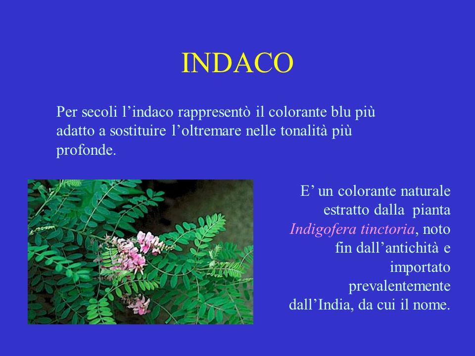 INDACO Per secoli l'indaco rappresentò il colorante blu più adatto a sostituire l'oltremare nelle tonalità più profonde. E' un colorante naturale estr