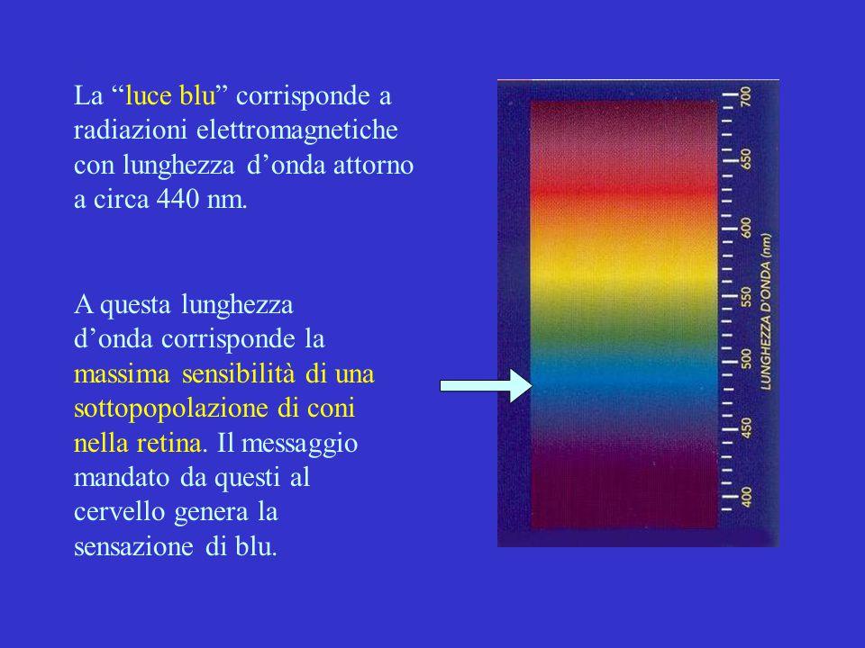 """La """"luce blu"""" corrisponde a radiazioni elettromagnetiche con lunghezza d'onda attorno a circa 440 nm. A questa lunghezza d'onda corrisponde la massima"""