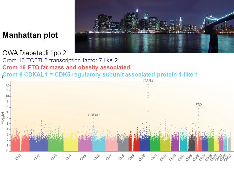 Manhattan plot GWA Diabete di tipo 2 Crom 10 TCF7L2 transcription factor 7-like 2 Crom 16 FTO fat mass and obesity associated Crom 6 CDKAL1 = CDK5 regulatory subunit associated protein 1-like 1