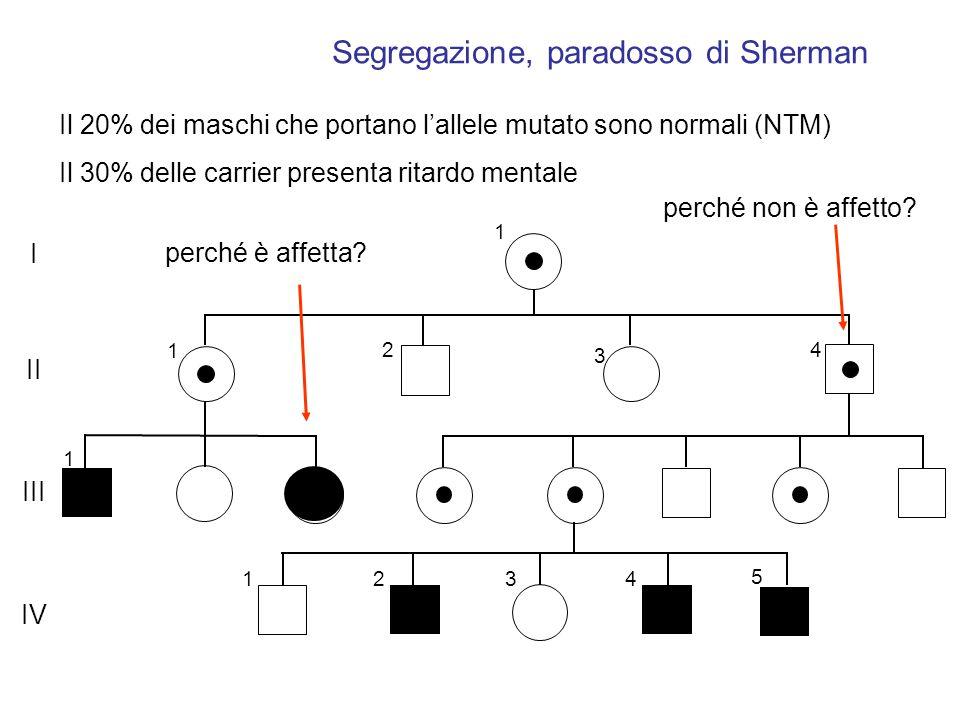 gemelli dizigoti DZ hanno lo stesso sesso nel 50% dei casi hanno lo stesso sesso nel 50% dei casi hanno il 50% degli alleli in comune hanno il 50% degli alleli in comune hanno il 50% dei polimorfismi in comune hanno il 50% dei polimorfismi in comune Occorre considerare il rapporto MZ/DZ che può essere inferiore a 2 o superiore a 2 in funzione del numero dei geni coinvolti