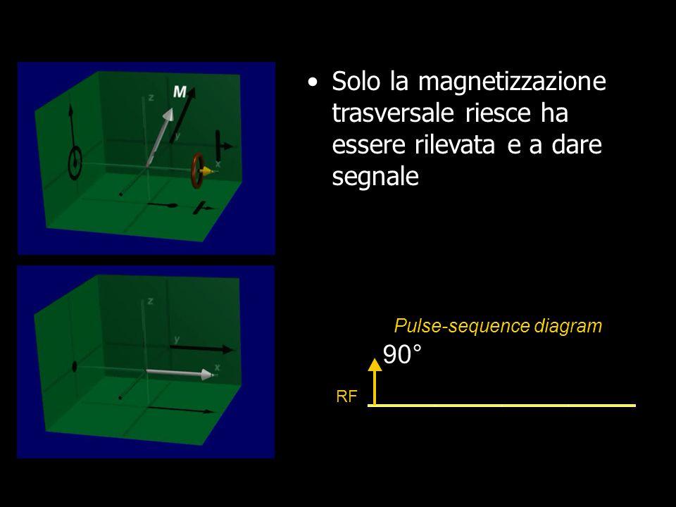 Tempi di rilassamento: T1 e T2 M xy time MzMz Decadimento del segnale nel piano trasversale in accordo con il T 2 Recupero della magnetizzazione lungo l`asse longitudinale in accordo con il T 1 Impulso RF T 1 >T 2 e -t/T2 1-e -t/T1