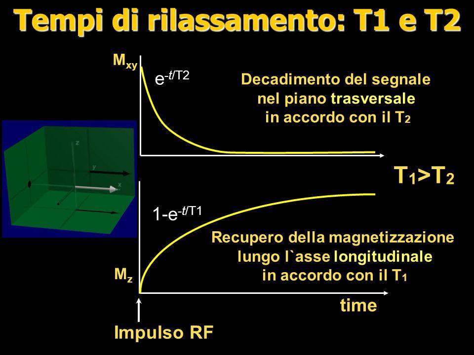 Tempo di eco (TE) e contrasto T2 TE Ampiezza del segnale Tessuto1 (T 2 lungo) Tessuto 2 (T 2 corto ) Dopo l`eccitazione, il signale decade exponenzialmente in accordo con il T 2.