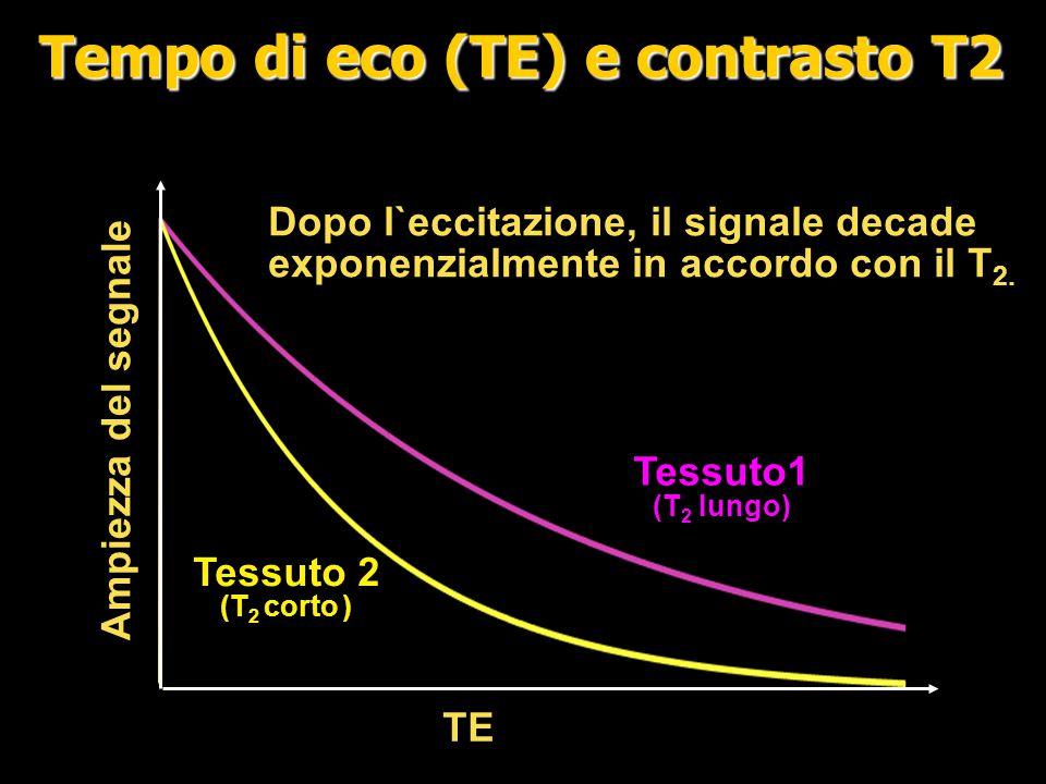 TE Segnale Alto signale TE corto Basso contrasto Echo Time (TE) e contrasto T2