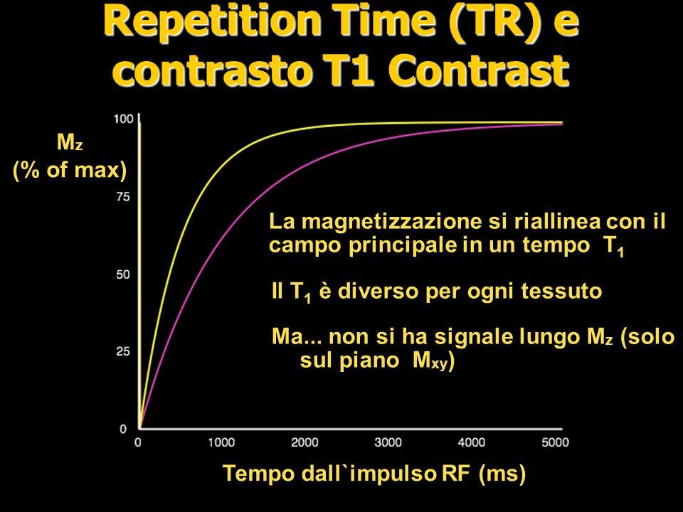 Short TR Short TE Long TE Long TR T1 T2 PD