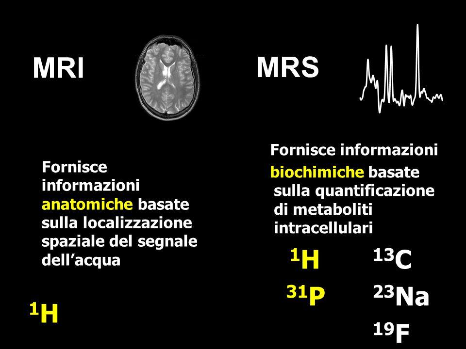 Significa calcolare la concentrazione molare dei metaboliti: Esterno: una soluzione a concentrazione nota.