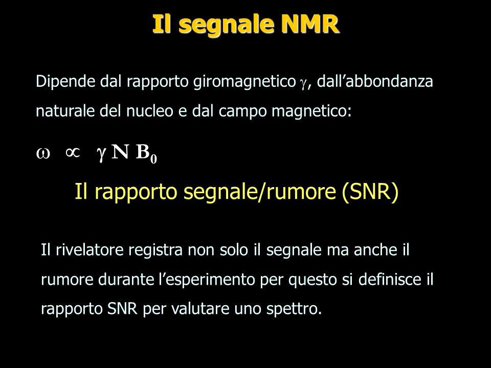 Signal Noise Ratio (SNR) Dipende da: Il nucleo che si guarda (g) L'abbondanza naturale Il volume che contribuisce al segnale (Vc) La concentrazione del nucleo all'interno del volume Il campo magnetico (B0) La bobina (B1) Il numero di acquisizioni o medie (n) La sequenza di impulsi