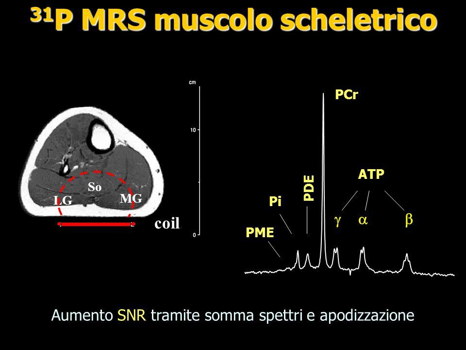 PCr Pi ATP   100-10-20 ppm Quantificazione assoluta [PCr], [Pi] ATP standard interno; [ATP] = 8.0 mM e calcolare: pH[Mg 2+ ], pH, [Mg 2+ ], [ADP] pH  Pi Mg 2 +  ATP 