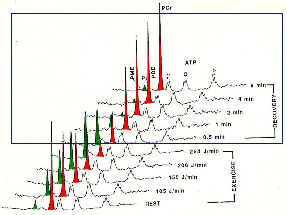 PCr Pi Row AT P    pH rest = 7.06 pH end-ex = 6.65 ATP  Pi )68.5( )9.3( log77.6 Pi pH     