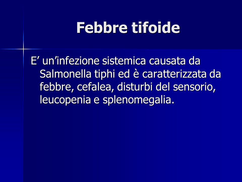 Febbre tifoide E' un'infezione sistemica causata da Salmonella tiphi ed è caratterizzata da febbre, cefalea, disturbi del sensorio, leucopenia e splenomegalia.
