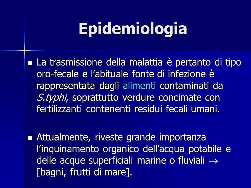 Epidemiologia La trasmissione della malattia è pertanto di tipo oro-fecale e l'abituale fonte di infezione è rappresentata dagli alimenti contaminati da S.typhi, soprattutto verdure concimate con fertilizzanti contenenti residui fecali umani.