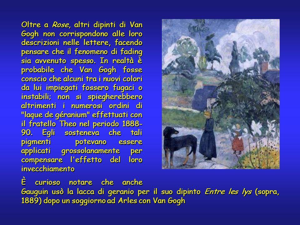 Oltre a Rose, altri dipinti di Van Gogh non corrispondono alle loro descrizioni nelle lettere, facendo pensare che il fenomeno di fading sia avvenuto spesso.