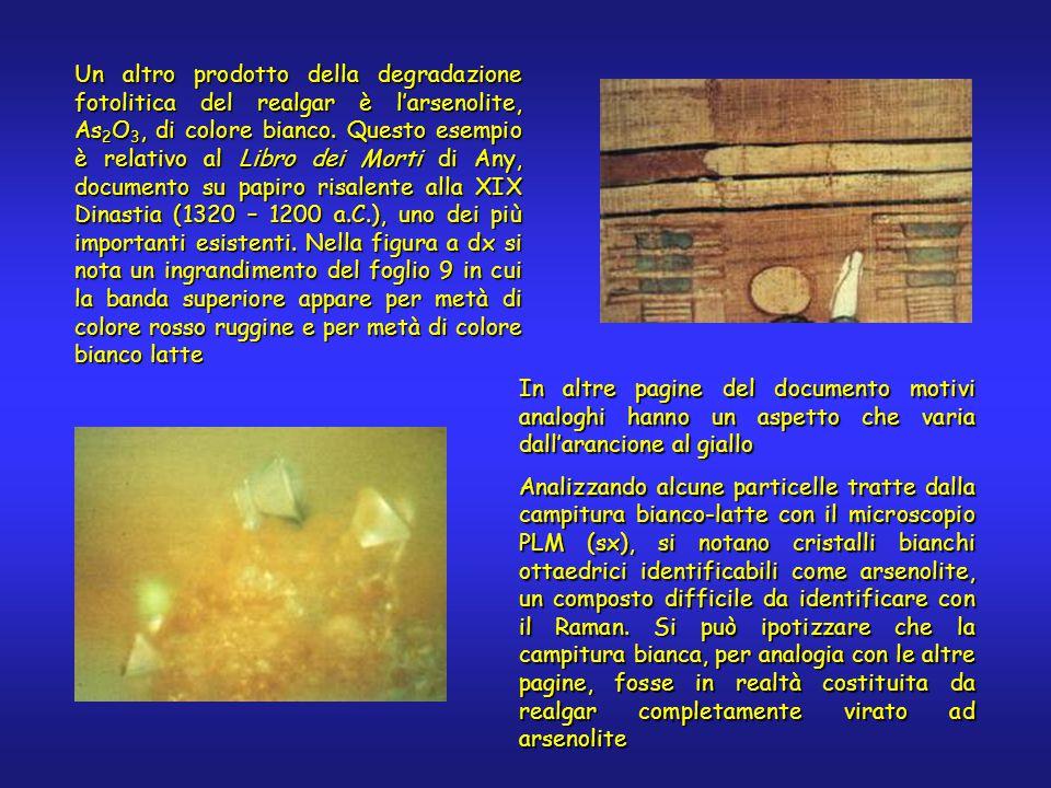 In altre pagine del documento motivi analoghi hanno un aspetto che varia dall'arancione al giallo Analizzando alcune particelle tratte dalla campitura bianco-latte con il microscopio PLM (sx), si notano cristalli bianchi ottaedrici identificabili come arsenolite, un composto difficile da identificare con il Raman.