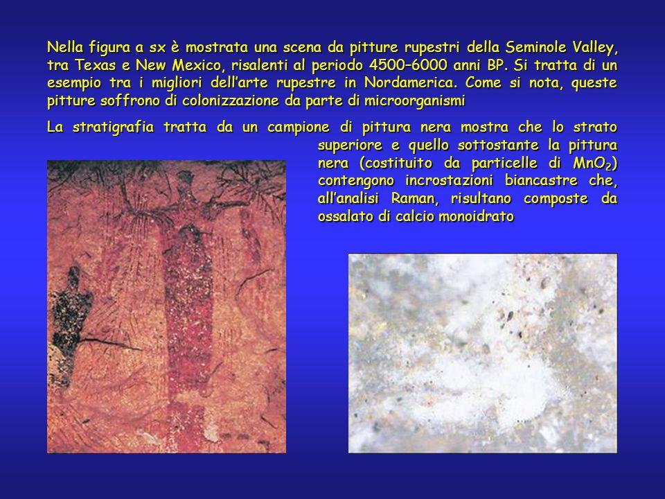 Nella figura a sx è mostrata una scena da pitture rupestri della Seminole Valley, tra Texas e New Mexico, risalenti al periodo 4500–6000 anni BP.
