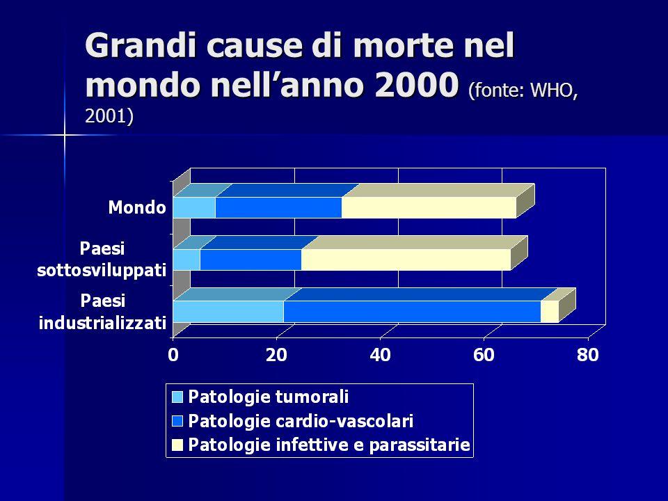 Grandi cause di morte nel mondo nell'anno 2000 (fonte: WHO, 2001)