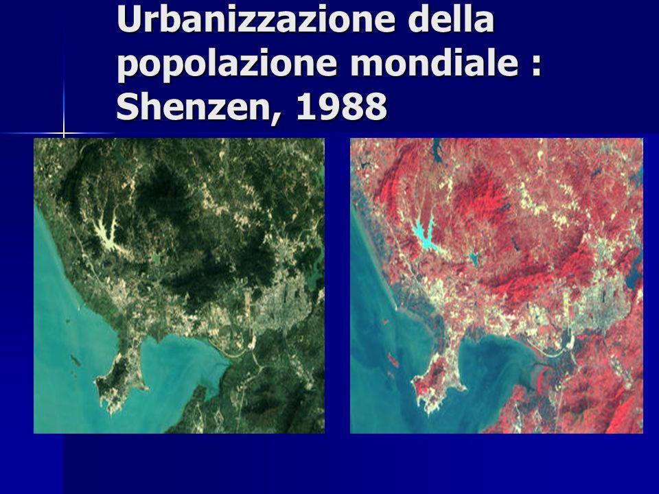 Urbanizzazione della popolazione mondiale : Shenzen, 1988