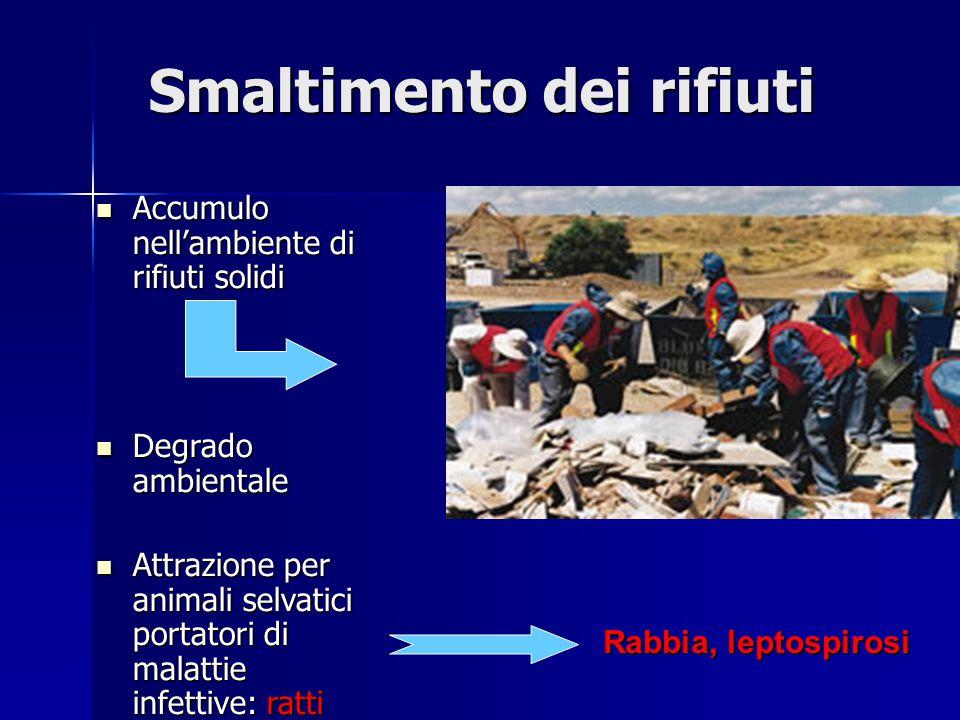 Accumulo nell'ambiente di rifiuti solidi Accumulo nell'ambiente di rifiuti solidi Degrado ambientale Degrado ambientale Attrazione per animali selvati