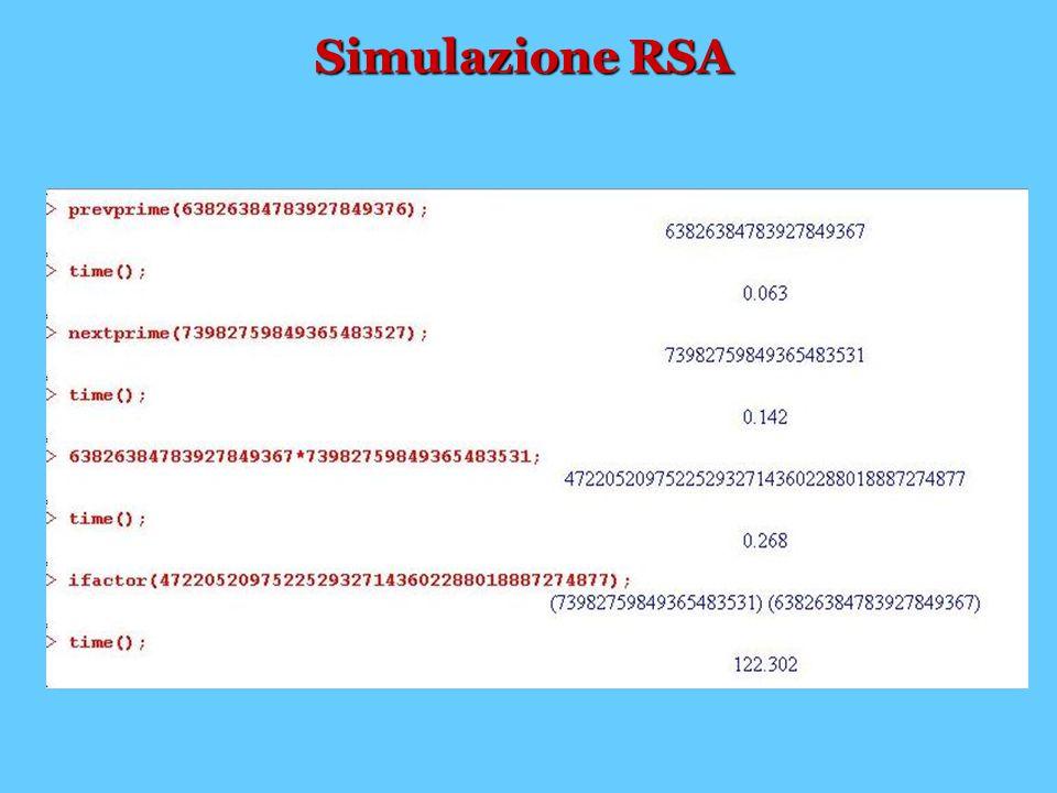 Simulazione RSA