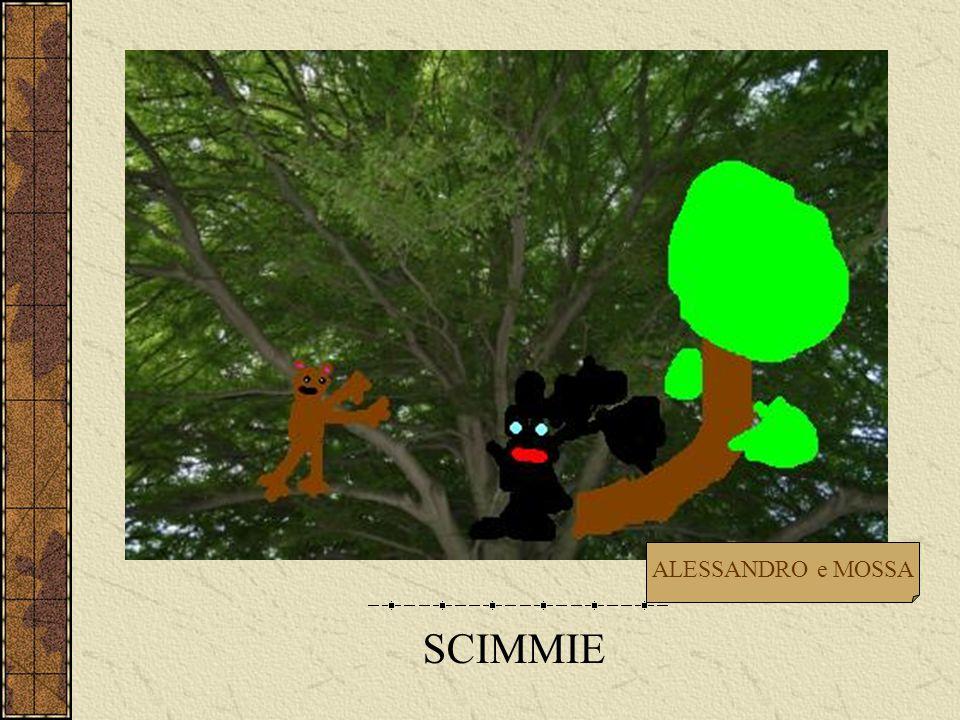 SCIMMIE ALESSANDRO e MOSSA