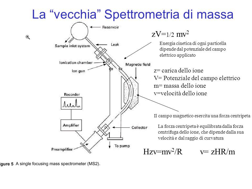 zV= 1/2 mv 2 z= carica dello ione V= Potenziale del campo elettrico m= massa dello ione v=velocità dello ione Hzv=mv 2 /R v= zHR/m zV= 1/2 m(zHR/m) 2 zV= 1/2 z 2 H 2 R 2 /mm/z=H 2 R 2 /2V R è fisso, H e V sono variabili, individuo ciascun frammento caratterizzato da diversa m/z