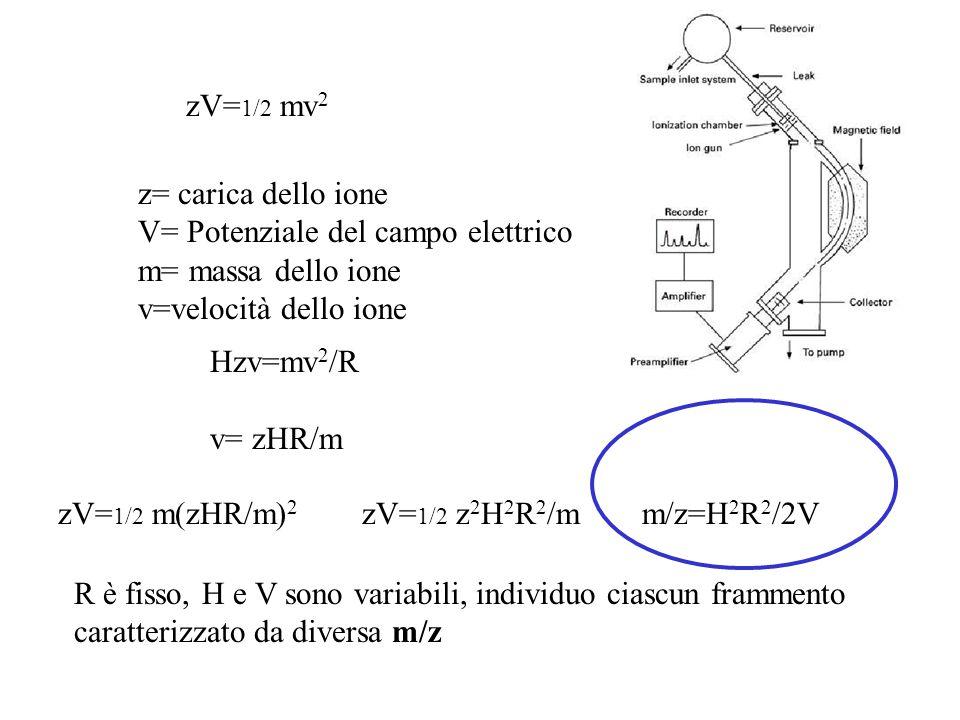 zV= 1/2 mv 2 z= carica dello ione V= Potenziale del campo elettrico m= massa dello ione v=velocità dello ione Hzv=mv 2 /R v= zHR/m zV= 1/2 m(zHR/m) 2
