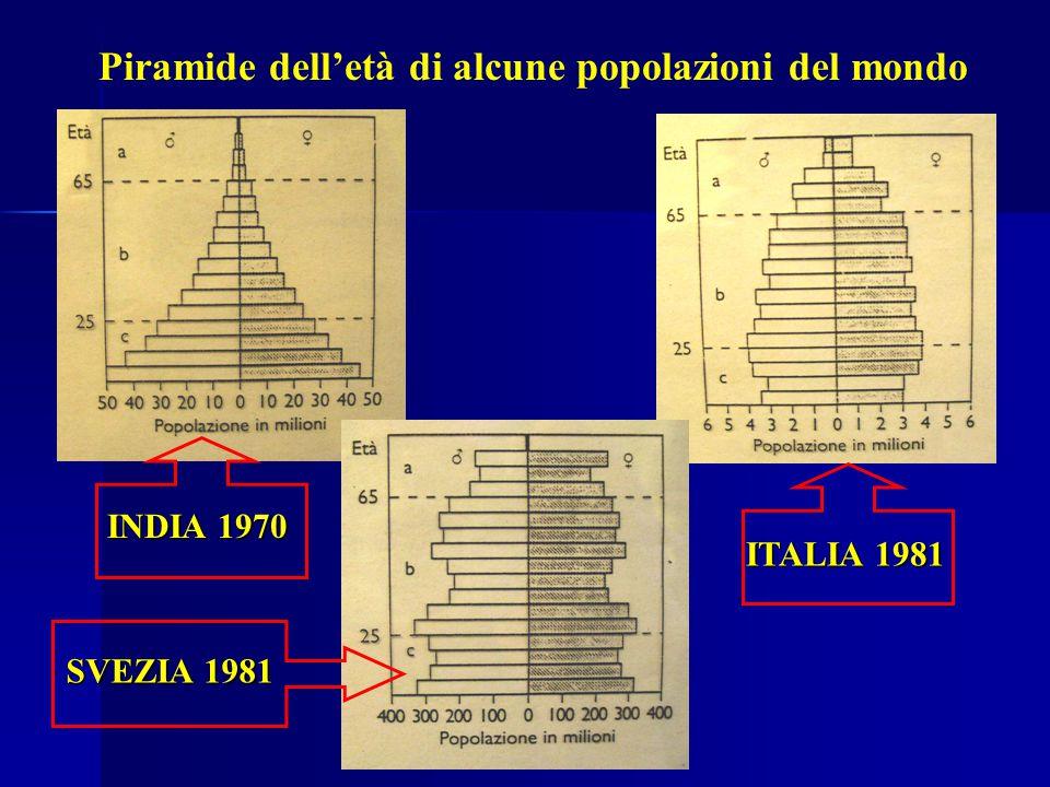 Piramide dell'età di alcune popolazioni del mondo SVEZIA 1981 INDIA 1970 ITALIA 1981