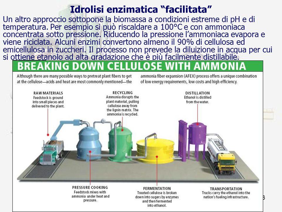 prof. F.Tottola IPSIA E. FERMI16 Un altro approccio sottopone la biomassa a condizioni estreme di pH e di temperatura. Per esempio si può riscaldare a