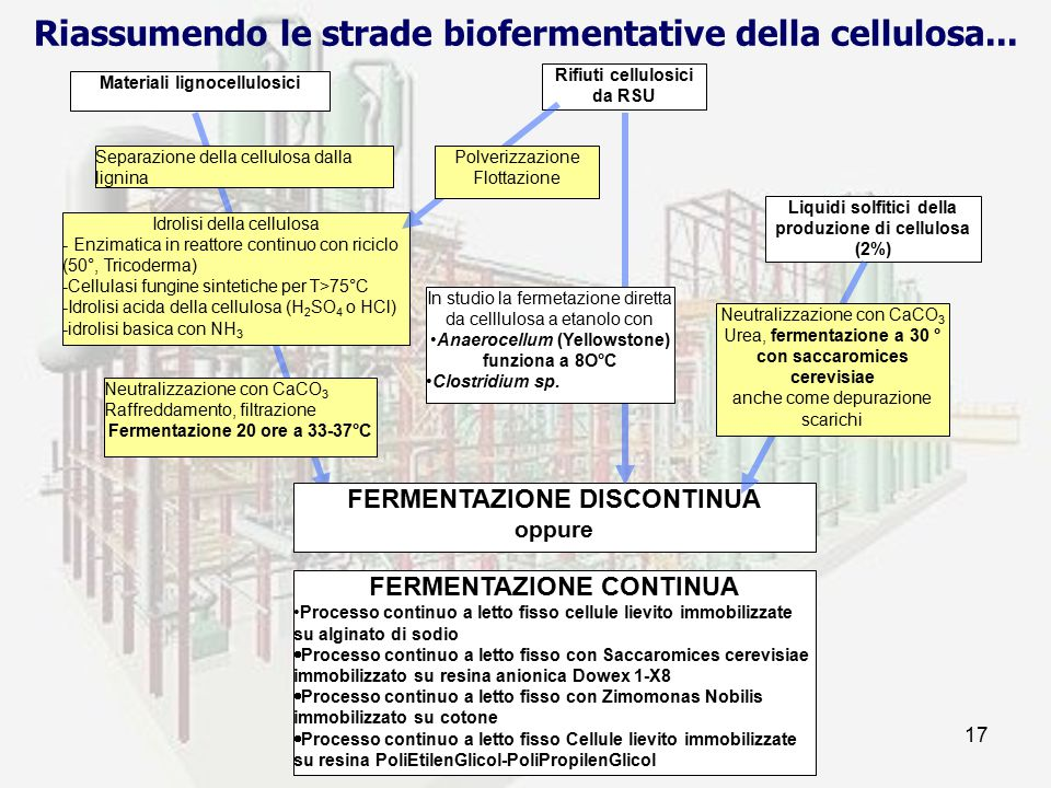 prof. F.Tottola IPSIA E. FERMI17 Materiali lignocellulosici Separazione della cellulosa dalla lignina Idrolisi della cellulosa - Enzimatica in reattor