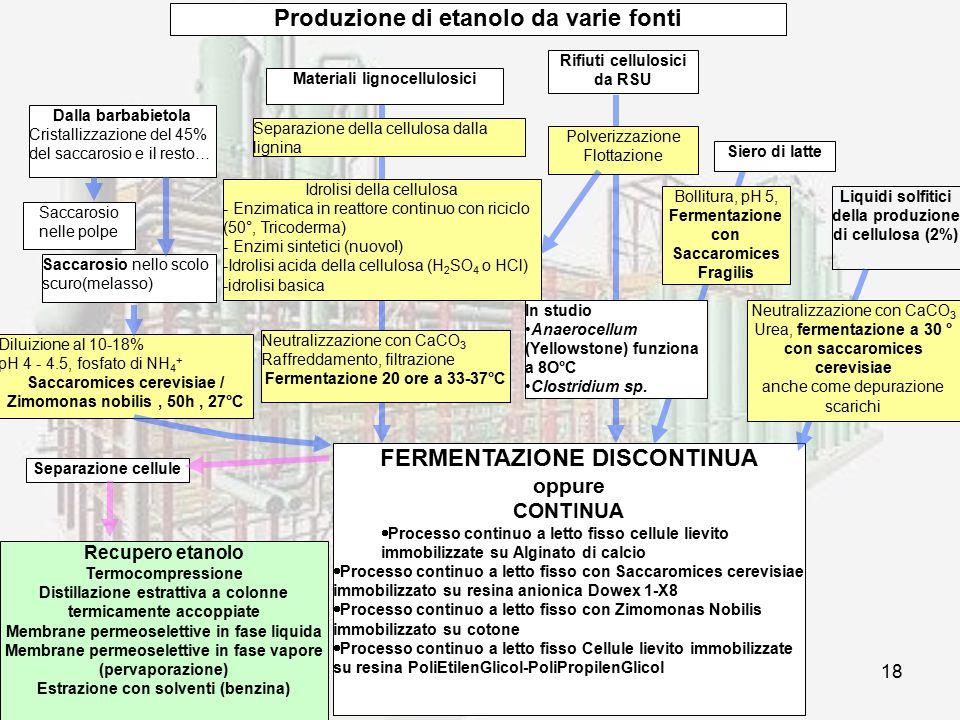 prof. F.Tottola IPSIA E. FERMI18 Dalla barbabietola Cristallizzazione del 45% del saccarosio e il resto… Saccarosio nelle polpe Saccarosio nello scolo