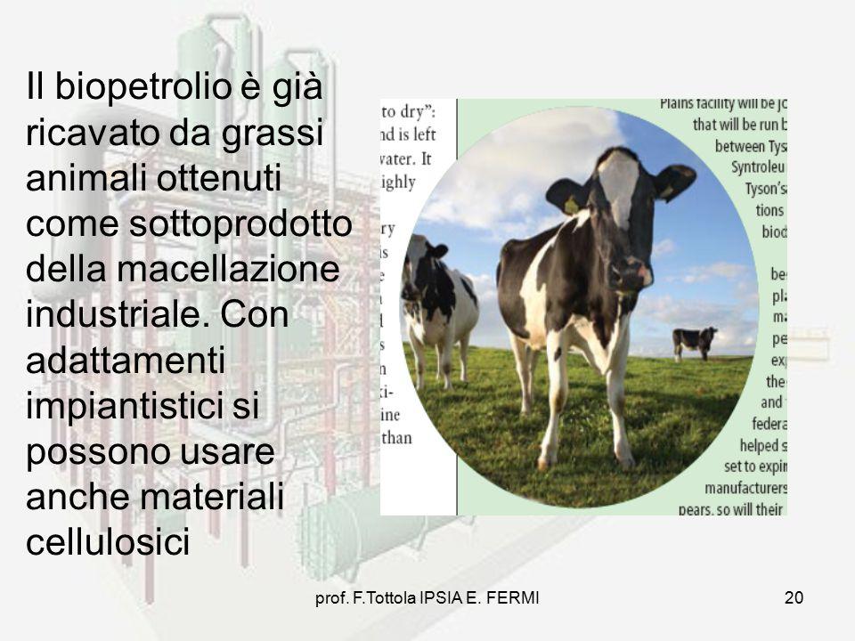 prof. F.Tottola IPSIA E. FERMI20 Il biopetrolio è già ricavato da grassi animali ottenuti come sottoprodotto della macellazione industriale. Con adatt