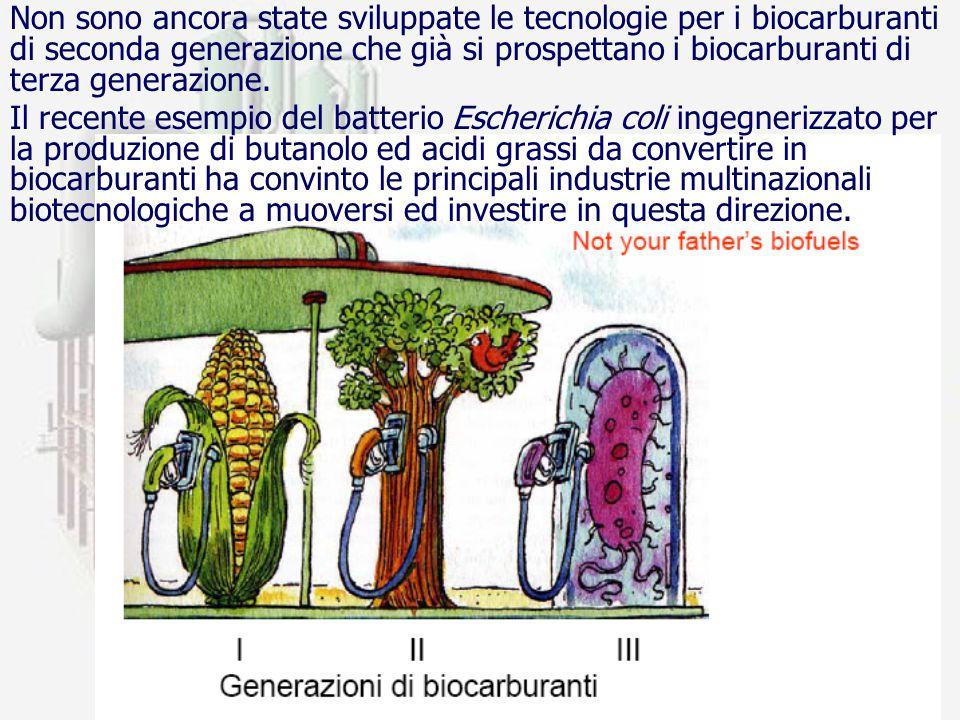 prof. F.Tottola IPSIA E. FERMI25 Non sono ancora state sviluppate le tecnologie per i biocarburanti di seconda generazione che già si prospettano i bi