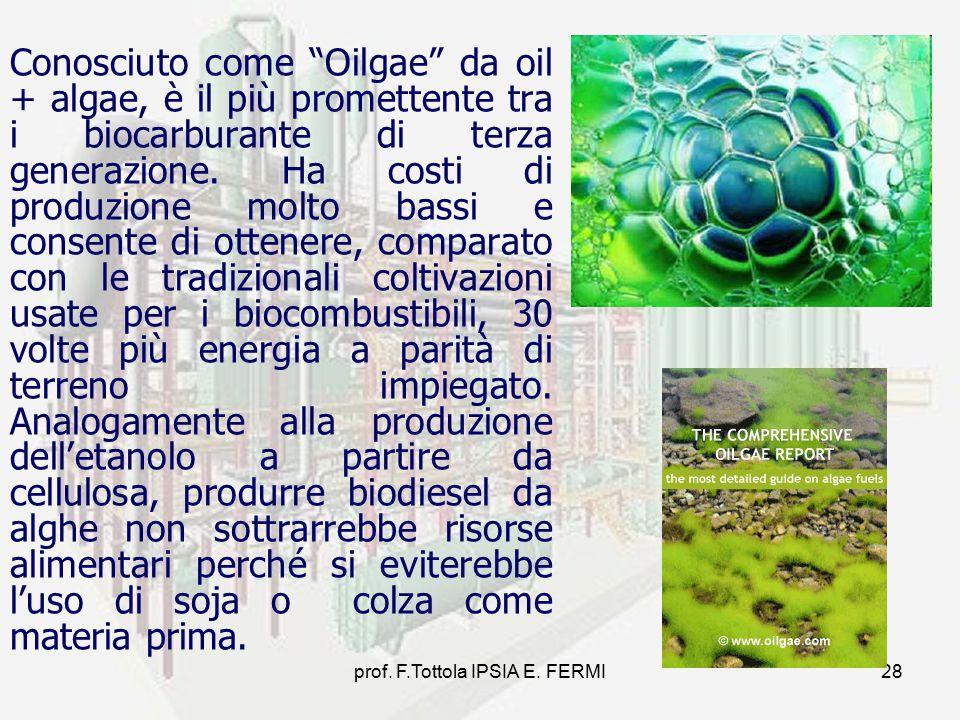 """prof. F.Tottola IPSIA E. FERMI28 Conosciuto come """"Oilgae"""" da oil + algae, è il più promettente tra i biocarburante di terza generazione. Ha costi di p"""