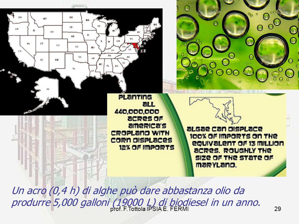 prof. F.Tottola IPSIA E. FERMI29 Un acro (0,4 h) di alghe può dare abbastanza olio da produrre 5,000 galloni (19000 L) di biodiesel in un anno.