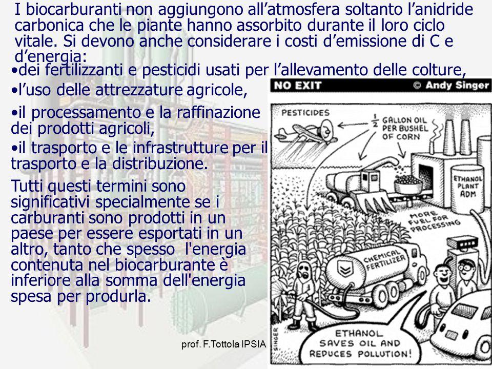 prof. F.Tottola IPSIA E. FERMI7 I biocarburanti non aggiungono all'atmosfera soltanto l'anidride carbonica che le piante hanno assorbito durante il lo