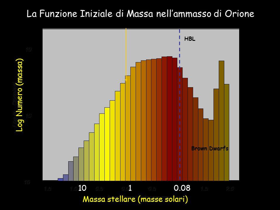 HBL Sun Brown Dwarfs La Funzione Iniziale di Massa nell'ammasso di Orione Massa stellare (masse solari) Log Numero (massa) 10 1 0.08