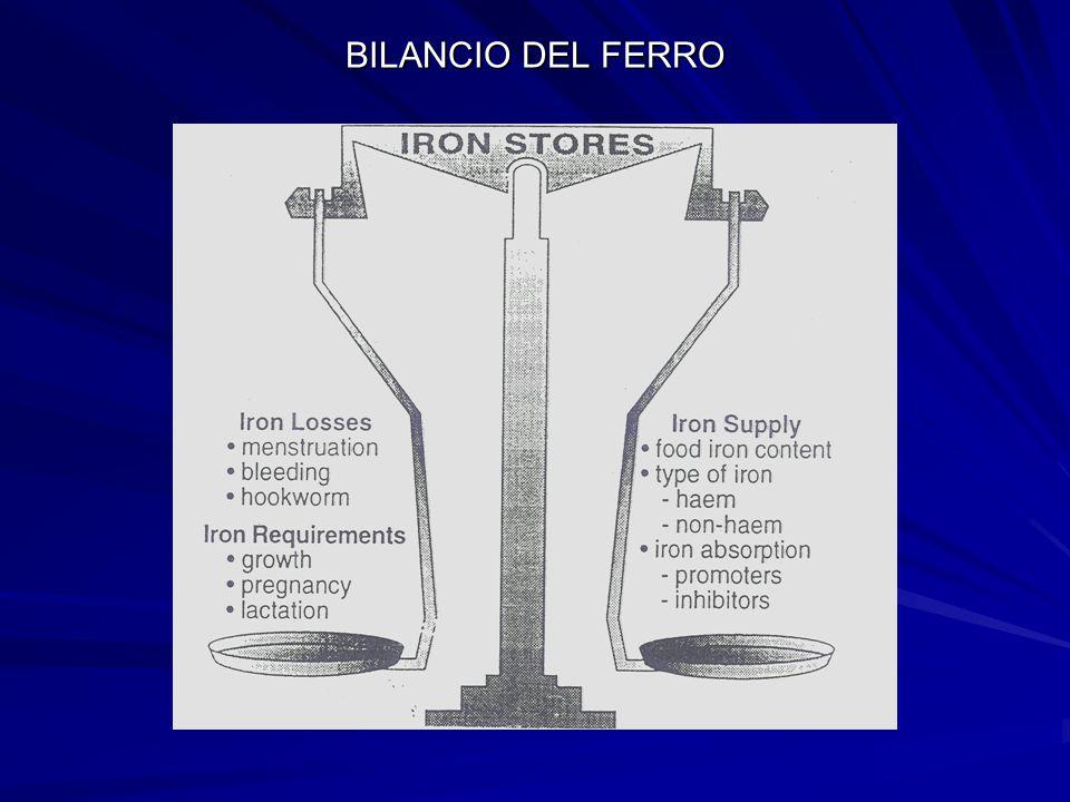 BILANCIO DEL FERRO