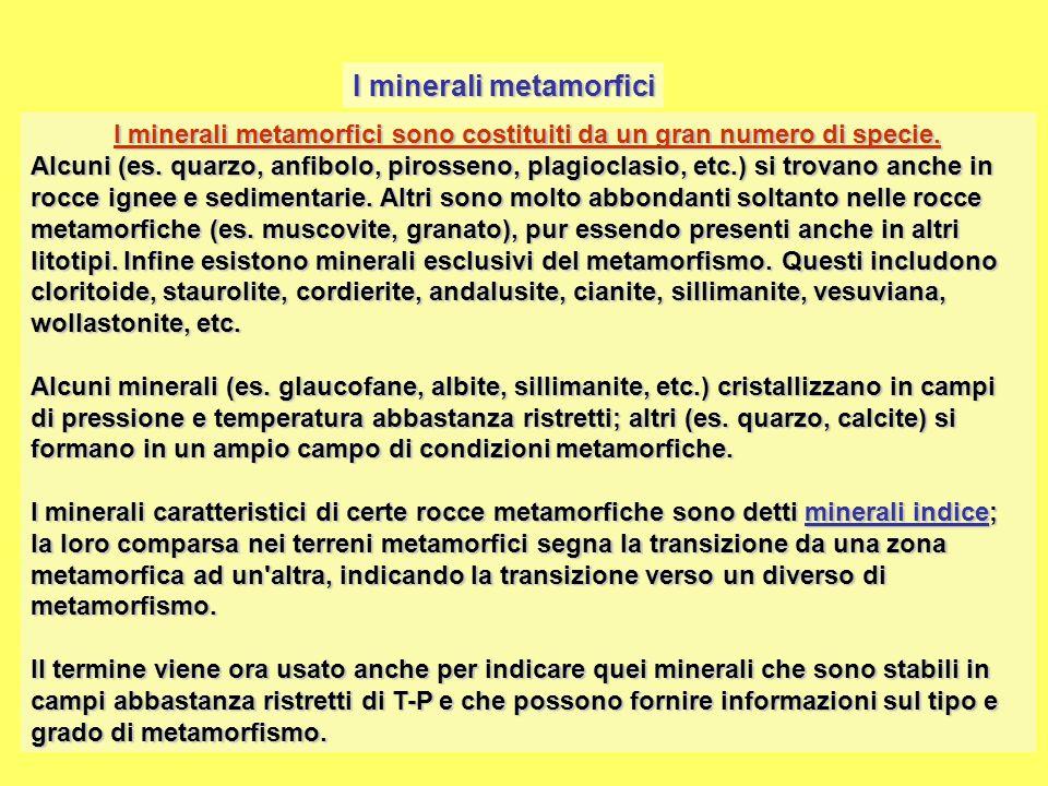 I minerali metamorfici I minerali metamorfici sono costituiti da un gran numero di specie. Alcuni (es. quarzo, anfibolo, pirosseno, plagioclasio, etc.