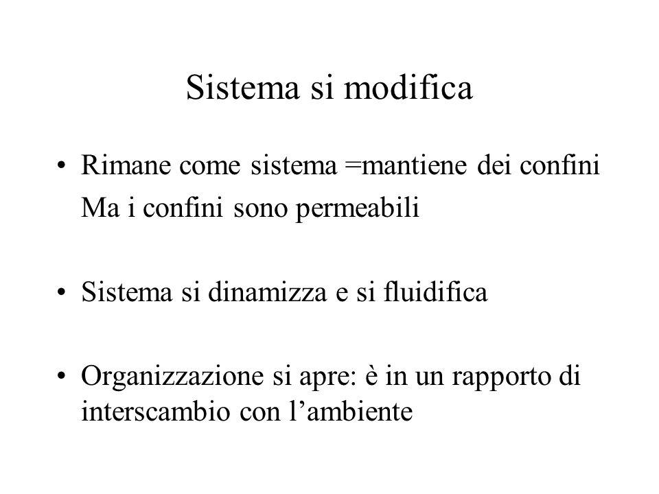 Sistema si modifica Rimane come sistema =mantiene dei confini Ma i confini sono permeabili Sistema si dinamizza e si fluidifica Organizzazione si apre: è in un rapporto di interscambio con l'ambiente