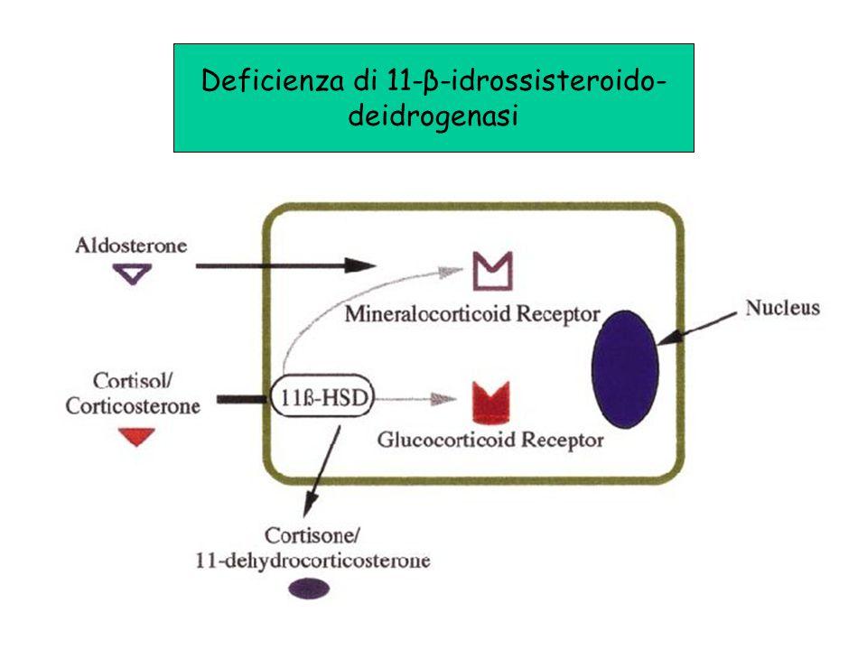 Deficienza di 11-β-idrossisteroido- deidrogenasi