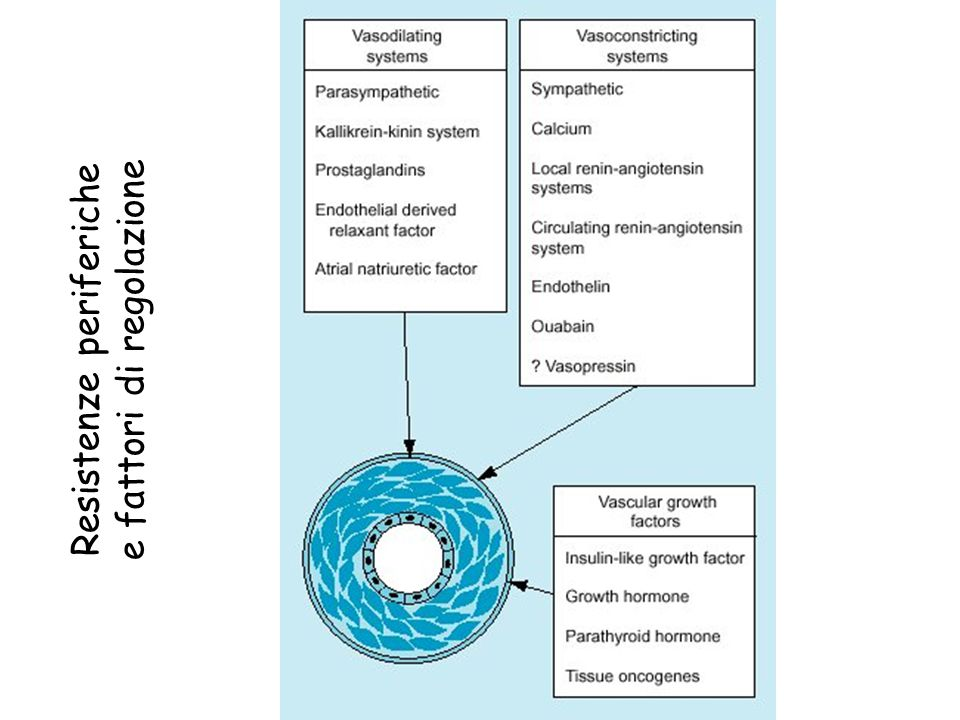 Eziopatogenesi dell'ipertensione essenziale PROBLEMATICHE  Per quanto l'ipotesi che un singolo meccanismo sia responsabile della sequenza di alterazioni che portano all'ipertensione sia attraente, può darsi che tale singolo meccanismo non esista: il concetto di mosaico dalle molte sfaccettature introdotto da Page è probabilmente puù appropriato.