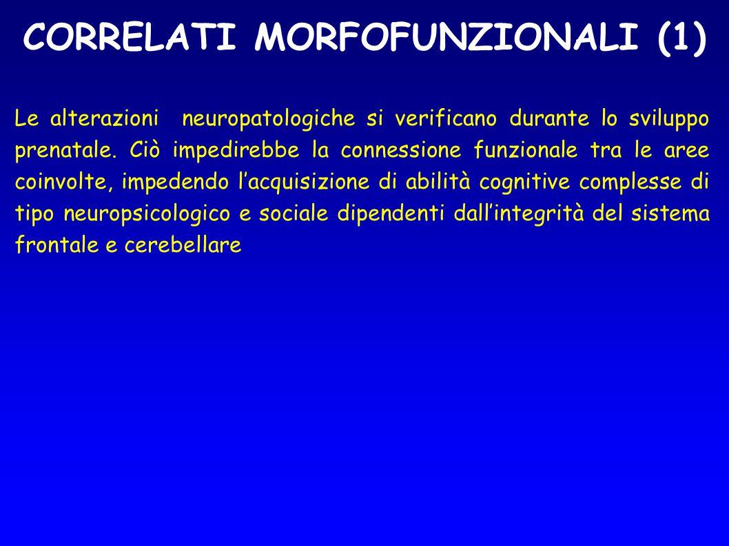 CORRELATI MORFOFUNZIONALI (1) Le alterazioni neuropatologiche si verificano durante lo sviluppo prenatale. Ciò impedirebbe la connessione funzionale t