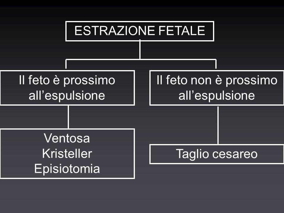 ESTRAZIONE FETALE Il feto è prossimo all'espulsione Il feto non è prossimo all'espulsione Ventosa Kristeller Episiotomia Taglio cesareo