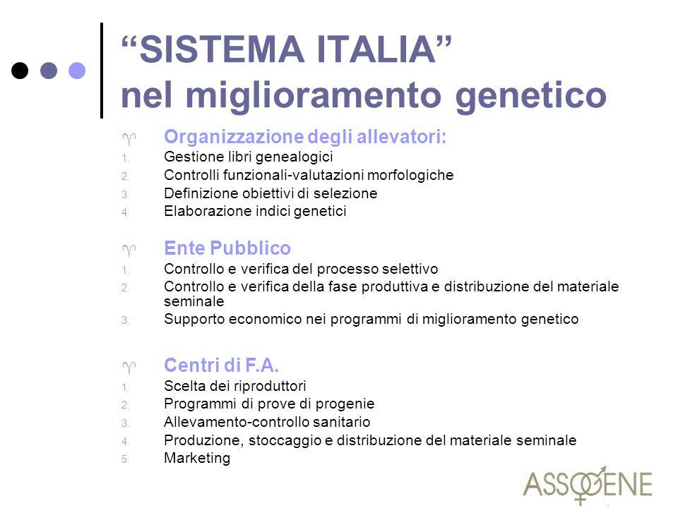 """""""SISTEMA ITALIA"""" nel miglioramento genetico ^ Organizzazione degli allevatori: 1. Gestione libri genealogici 2. Controlli funzionali-valutazioni morfo"""
