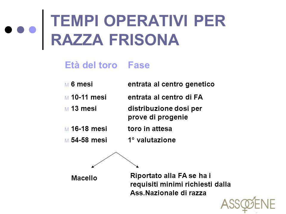 TEMPI OPERATIVI PER RAZZA FRISONA Età del toroFase M 6 mesientrata al centro genetico M 10-11 mesientrata al centro di FA M 13 mesidistribuzione dosi