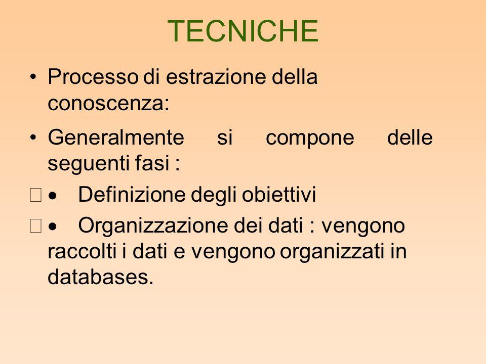 TECNICHE Processo di estrazione della conoscenza: Generalmente si compone delle seguenti fasi :  Definizione degli obiettivi  Organizzazione dei dati : vengono raccolti i dati e vengono organizzati in databases.
