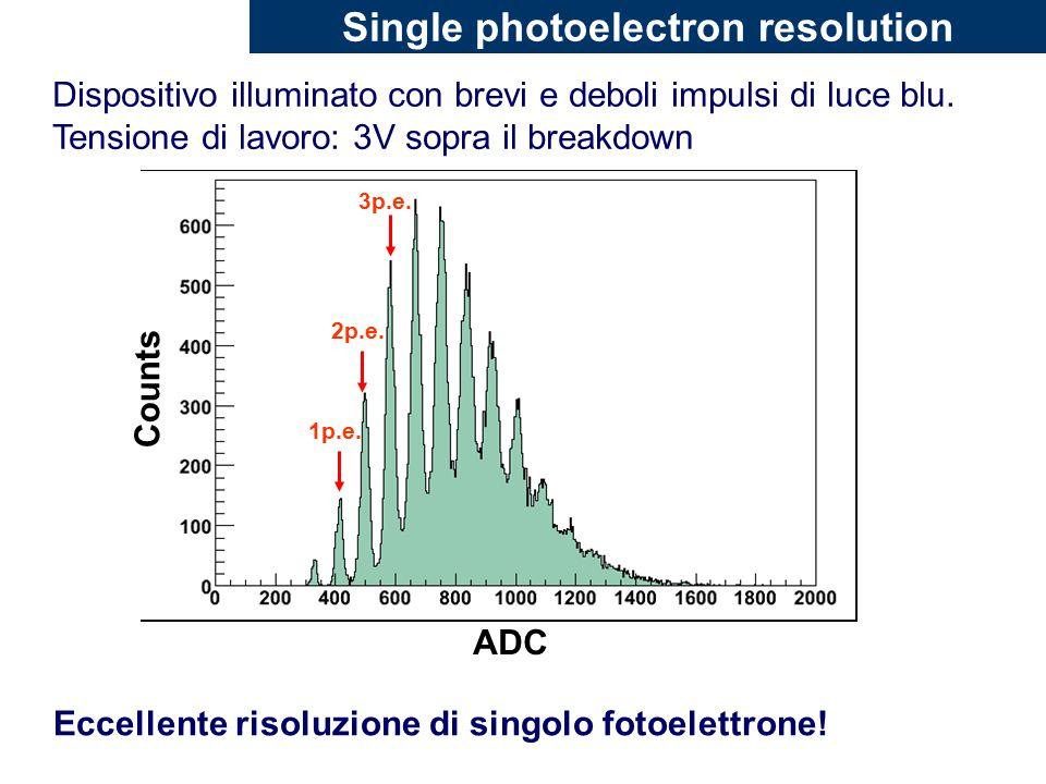 Single photoelectron resolution Dispositivo illuminato con brevi e deboli impulsi di luce blu.
