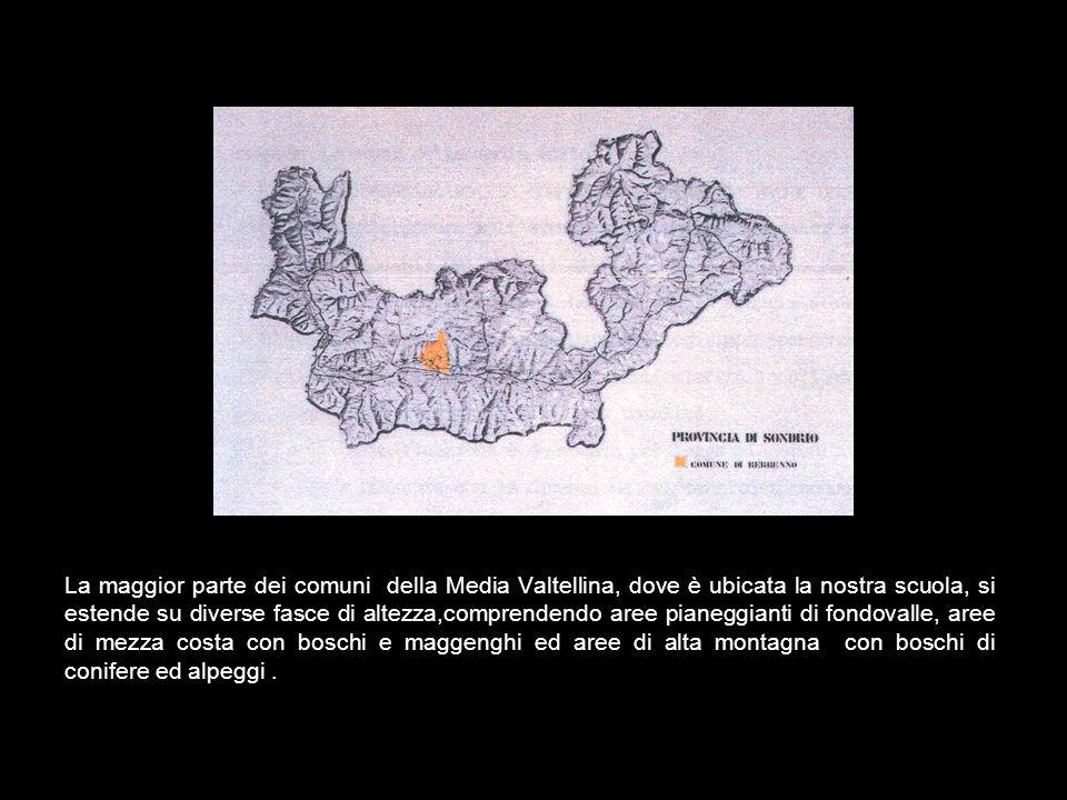 TERRITORIO, TIPOLOGIE EDILIZIE E PROGETTAZIONE IN VALTELLINA Il territorio della Provincia di Sondrio è facilmente identificabile nel contesto della R